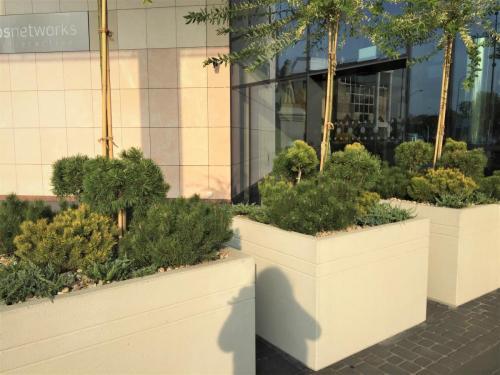 zielen---siedziba-tvn-s-a-warszawa12